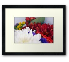 Watercolor style natural background with beautiful colorful flower petals. Framed Print