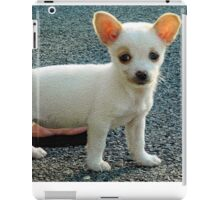The puppy pose iPad Case/Skin