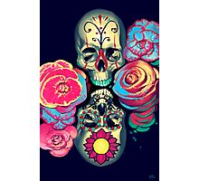 Skulls and Flowers Photographic Print