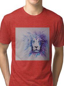 Lionstein by Lufty Tri-blend T-Shirt