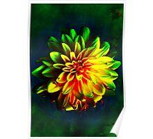 Verdant Sunflower Poster