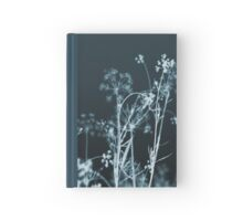 In the Still of the Night Hardcover Journal