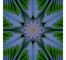 Abstract flora and fauna fractal art ornament. Photographic Print