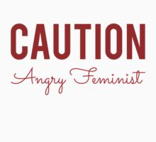Caution Angry Feminist by Alan Craker