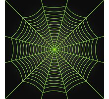 Neon green spider web Photographic Print