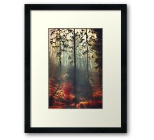 weight of light Framed Print