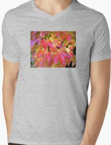 Autumn Leaves on Vines Mens V-Neck T-Shirt