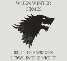 House Stark - Game of Thrones T-Shirt / Phone case / Pillow 8 by Fenx