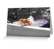 Colourful Macro Detailed Dragonfly Greeting Card