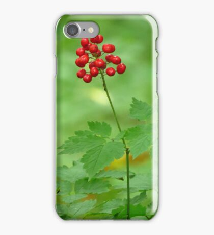 RED in the Woods  iPhone Case/Skin