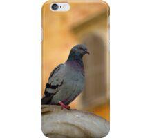 Posing Pigeon iPhone Case/Skin