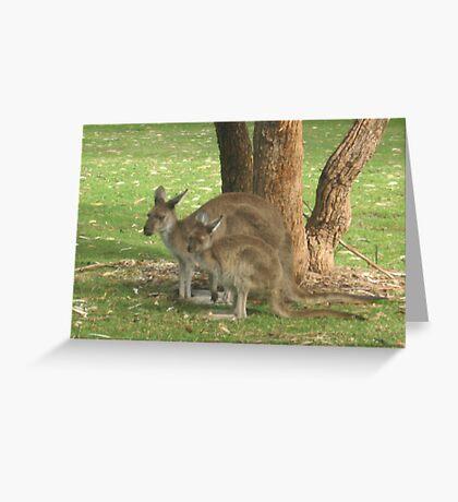 Mother Kangaroo and young Greeting Card