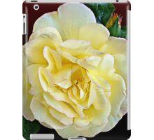 Floral Yellow Blush Rose iPad Case/Skin