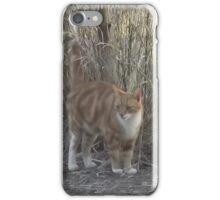 Garfield the Cat iPhone Case/Skin