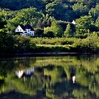 Summer Reflections by Kathleen Daley
