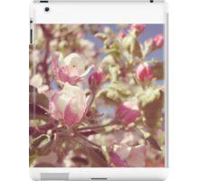 Spring Apple Blossoms iPad Case/Skin