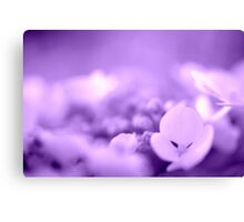 Hydrangea Dreams - Purple Canvas Print