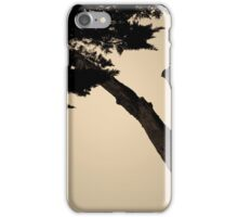 Monterey Cypress II Toned iPhone Case/Skin