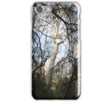 Bidwell Trees (original) iPhone Case/Skin