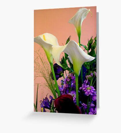 Zantedeschia aethiopica (1) Greeting Card