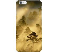 28.6.2014: Morning in Torronsuo National Park iPhone Case/Skin