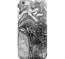 Silver Garden 1 iPhone Case/Skin