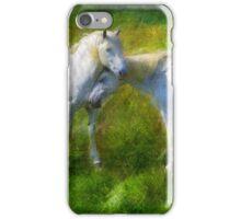 In Love iPhone Case/Skin