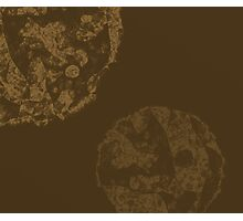 Brown and tan abstract Photographic Print