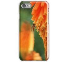 hoverfly in blossom iPhone Case/Skin