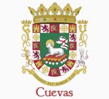 Cuevas Shield of Puerto Rico Baby Tee