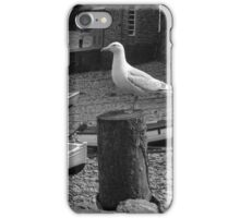 Clovelly Seagull iPhone Case/Skin