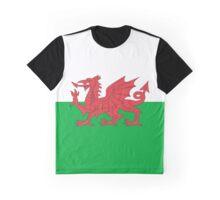 Baner Cymru - Flag of Wales T Shirt Graphic T-Shirt