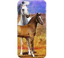 Grey Arabian Mare & Colt Foal iPhone Case/Skin