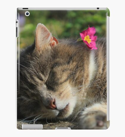 Sleeping cat with primrose iPad Case/Skin