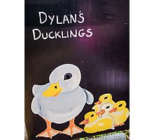 Dylans Ducklings Photographic Print
