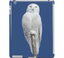 Dreams DO come true iPad Case/Skin