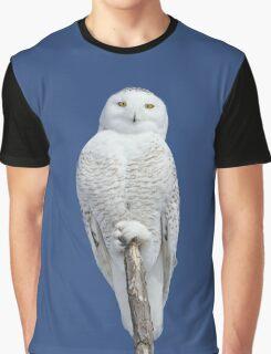 Dreams DO come true Graphic T-Shirt