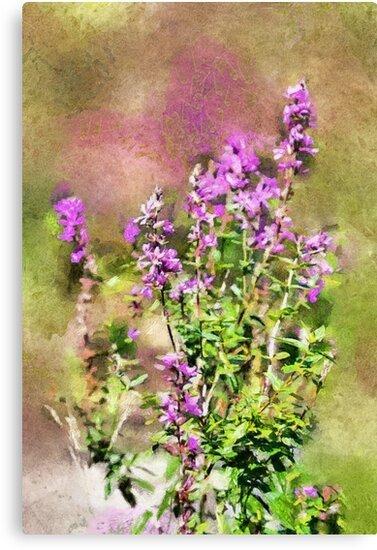 Wildflowers - painted by PhotosByHealy