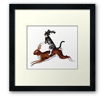 Cat Hare Framed Print