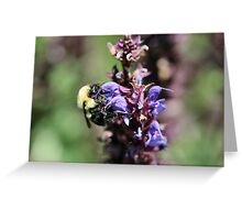 I'm working...don't bug me! Greeting Card