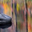 Fall Reflections by joelmcafee