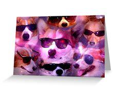 Corgis & Sunglasses Greeting Card