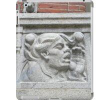 Cornerstone Sculpture iPad Case/Skin