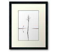 Rock Harbor Clam Trees, Cape Cod Framed Print