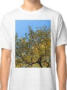 Tulip Tree in the Autumn Classic T-Shirt