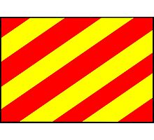 Letter Y Flag Photographic Print