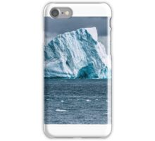 Albatross Iceberg - Antarctica iPhone Case/Skin