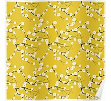 Japanese White Cherry Blossom Branches on Gold Poster