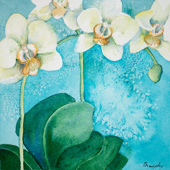 White Orchid by Anita Murphy
