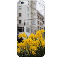 Portland Daffodils iPhone Case/Skin